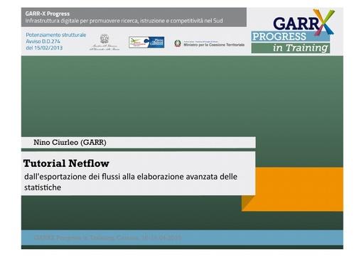 Tutorial netflow - N.Ciurleo